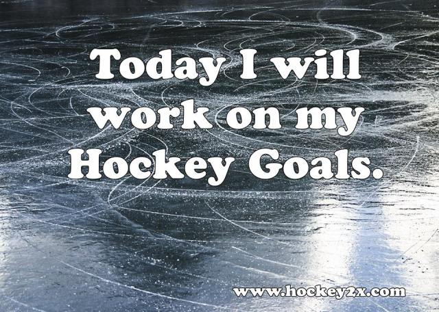 Hockey Goals.